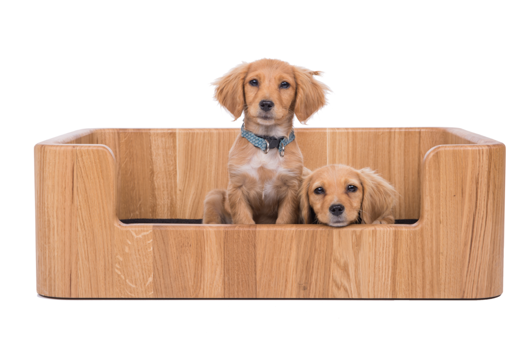 Beds and feeders for pets